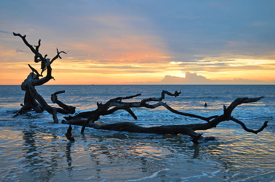 Sunrise At Driftwood Beach 1 4 Photograph By Bruce Gourley