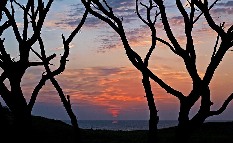Trees Photograph - Sunrise At Fort Fisher by Paul Boroznoff