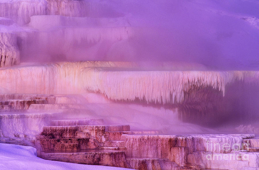 North America Photograph - Sunrise At Minerva Springs Yellowstone National Park by Dave Welling