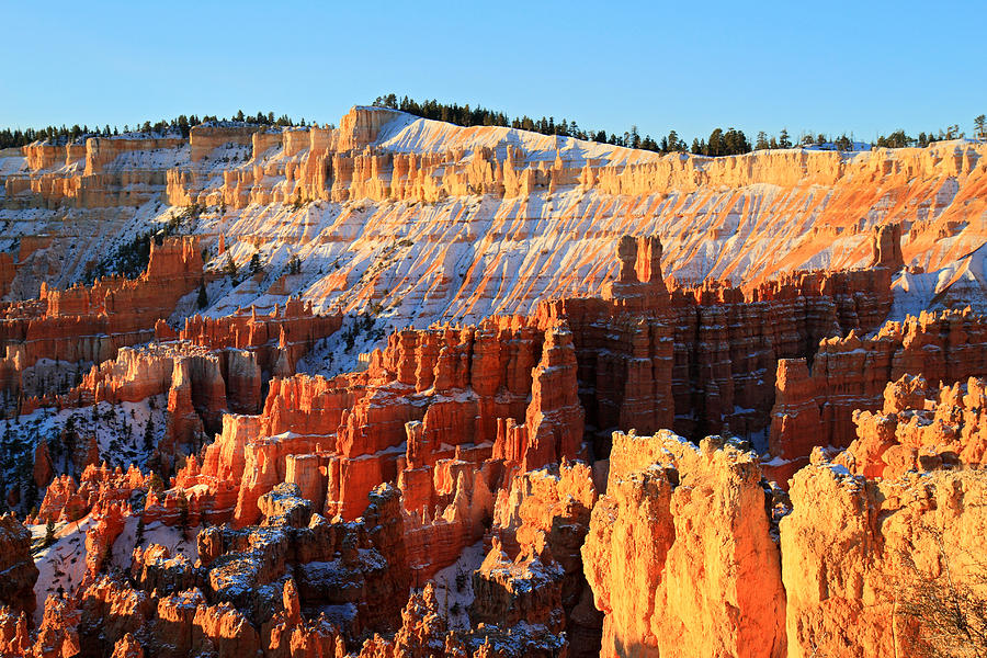 Bryce Photograph - Sunrise at Sunset point in Bryce Canyon by Pierre Leclerc Photography