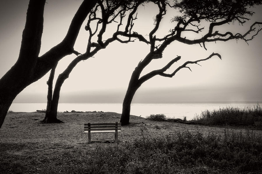 Sunrise At The Bench in Black and White by Greg Mimbs