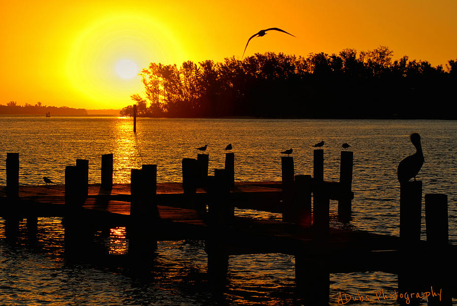 Boat Photograph - Sunrise At The Boat Launch  by Allen Williamson