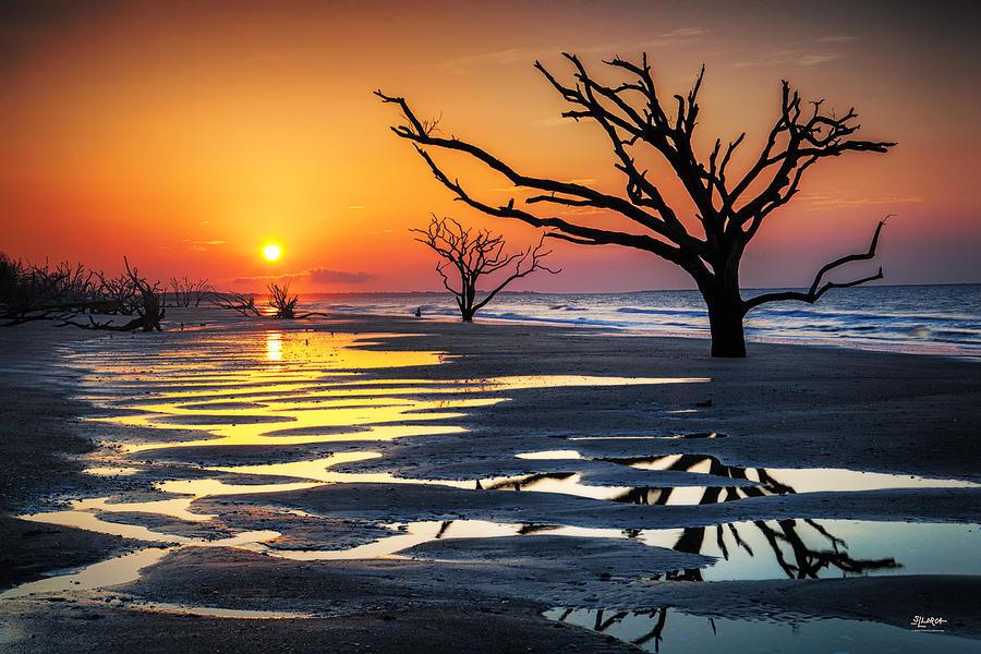 Sunrise At The Boneyard by Steven Llorca