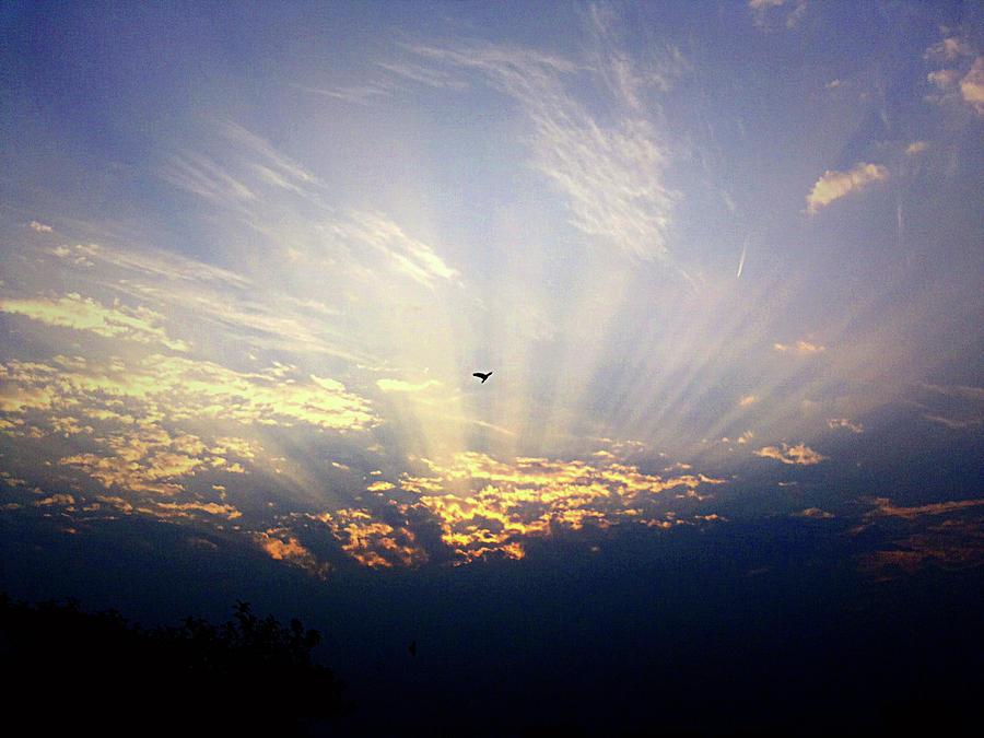 City Photograph - Sunrise by Atullya N Srivastava