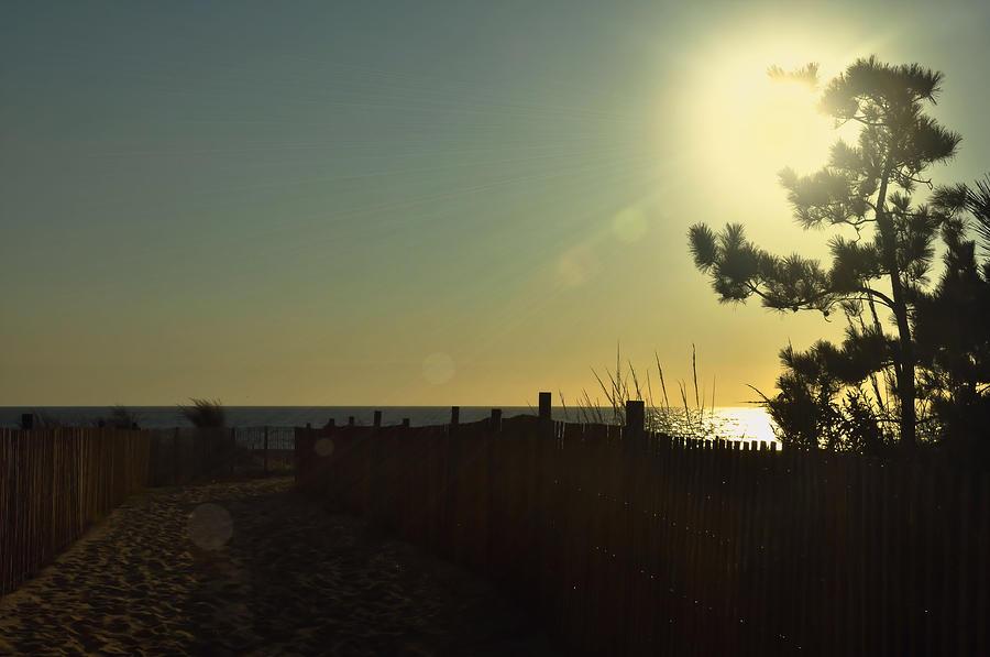 Beach Photograph - Sunrise Bask by JAMART Photography