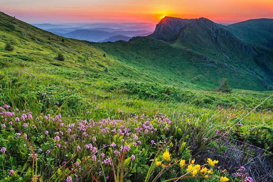 Balkan Mountains Photograph - Sunrise Behind Goat Wall by Evgeni Dinev