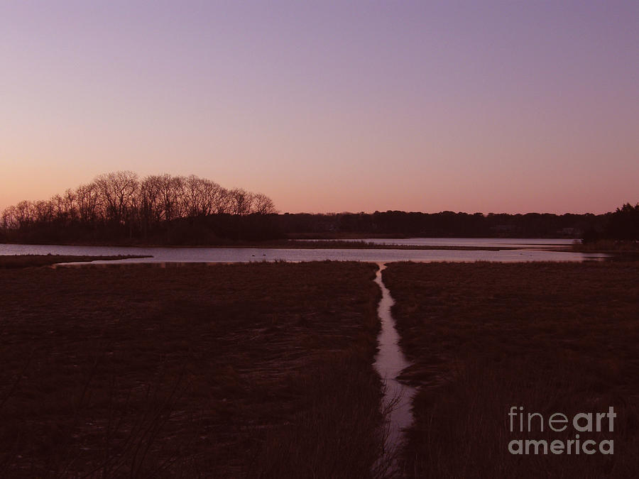 Sunrise Photograph - Sunrise by Carol Christopher