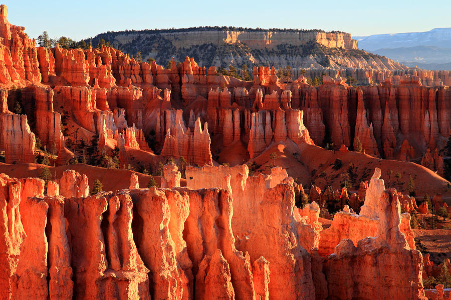 Bryce Photograph - Sunrise Hoodoos In Bryce Canyon by Pierre Leclerc Photography