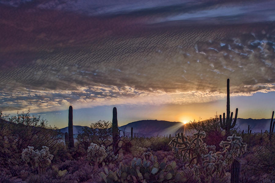 Sunrise in Sabino Canyon remix by Dan McManus