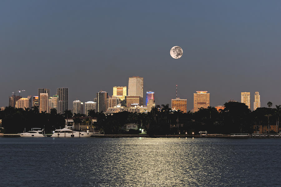 Moonrise Over Miami by Gary Dean Mercer Clark