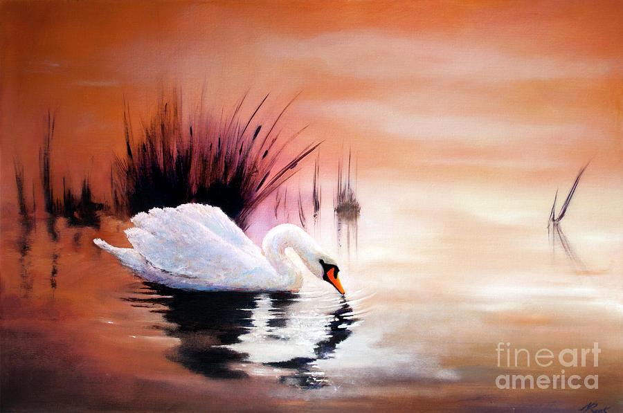 Sunrise on Swan Lake by Michael Rock