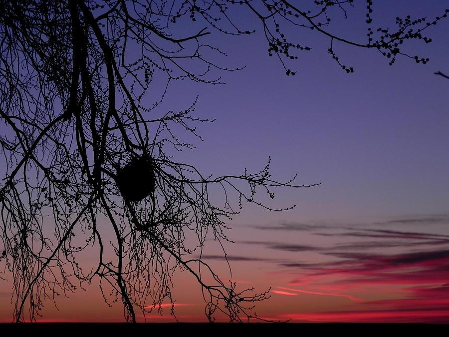 Landscape Photograph - Sunrise on the Colorado Plains by Adrienne Petterson