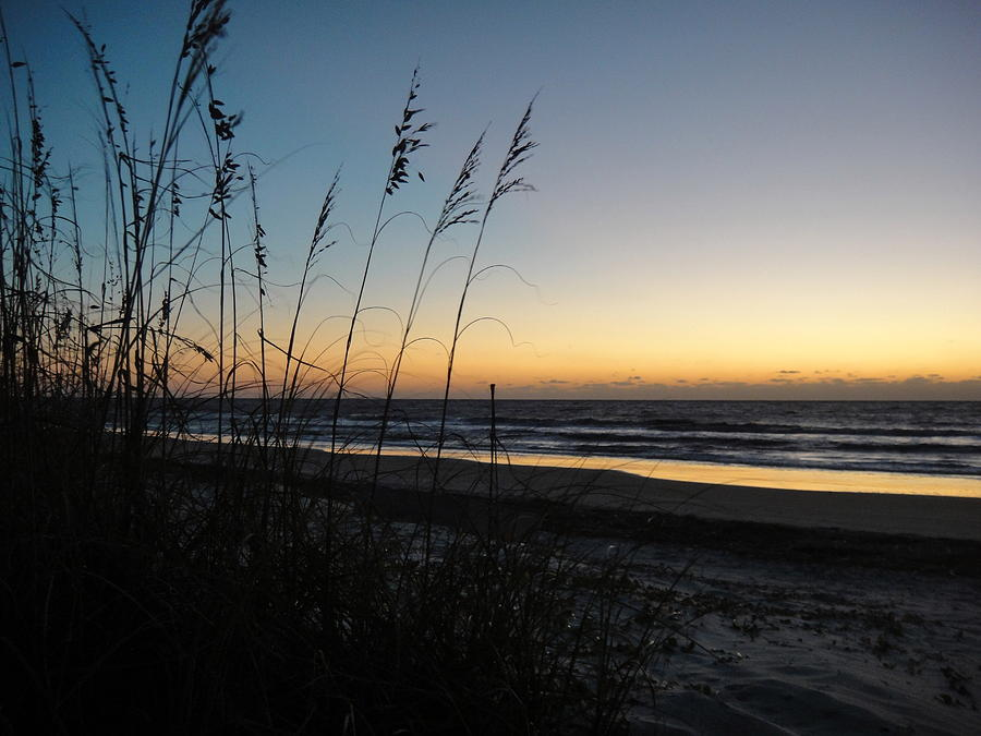 Beach Photograph - Sunrise On The Dune by Lori Yourth