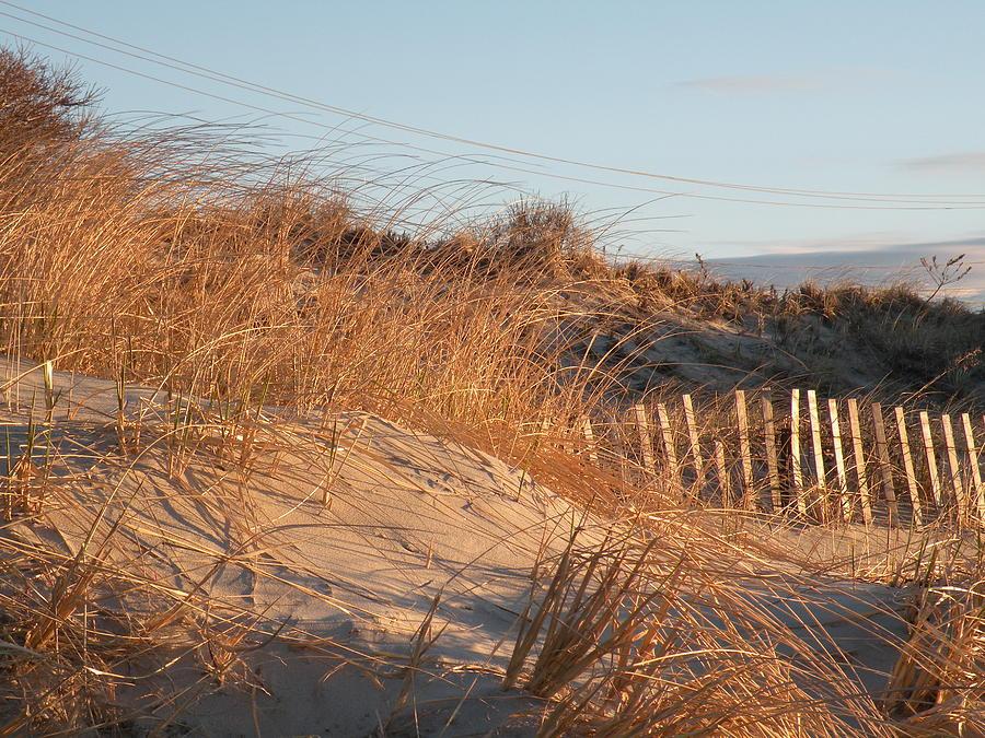 Sunrise Photograph - Sunrise On The Dunes by Donald Cameron