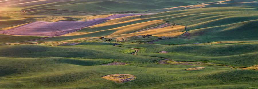 Sunrise on the Palouse by Daniel Ryan
