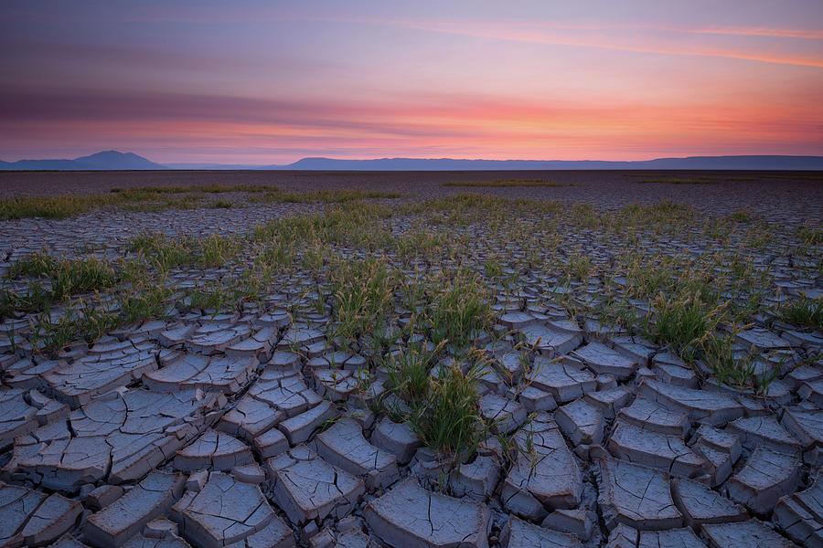 Sunrise on the Playa by Andrew Kumler
