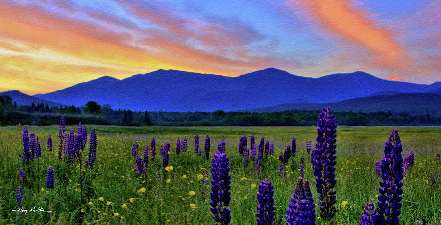 Sunrise On The Presidentials by Harry Moulton