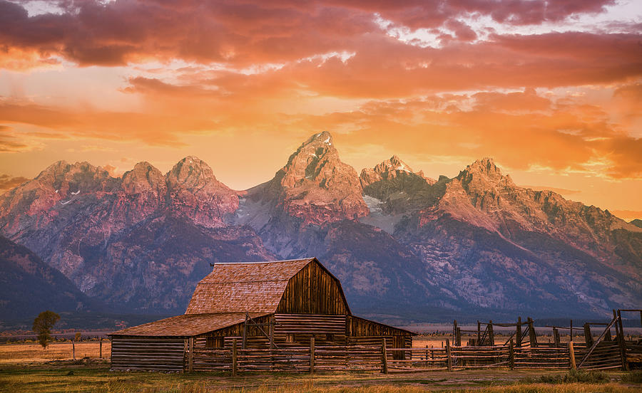 Sunrise On The Ranch Photograph