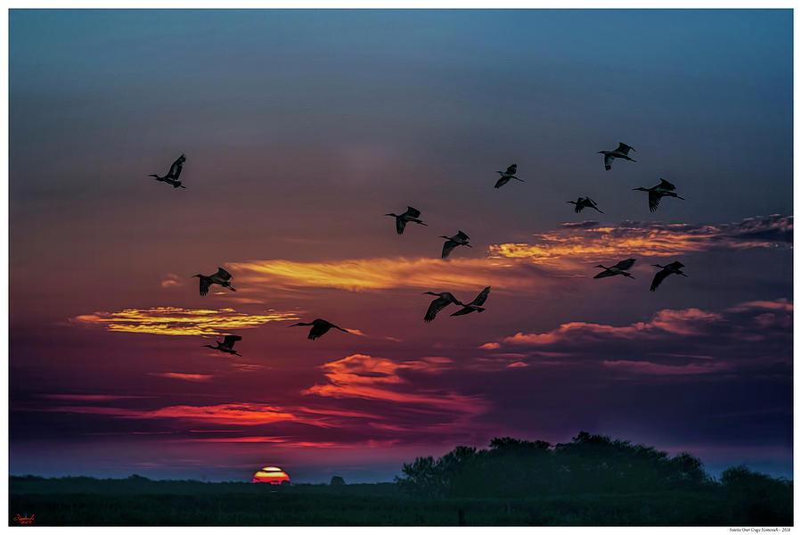Sunrise Over Grape Hammock by Rogermike Wilson