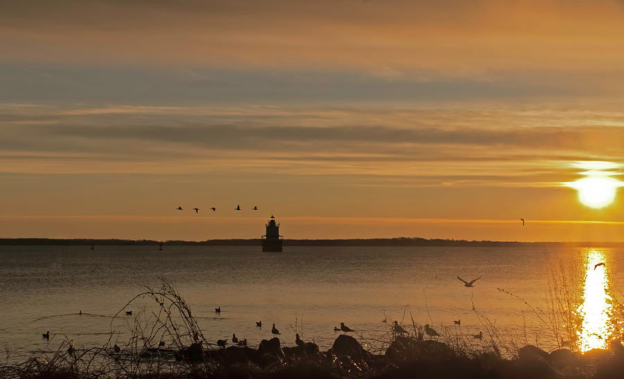 Sunrise over New Bedford by Ed Cabral