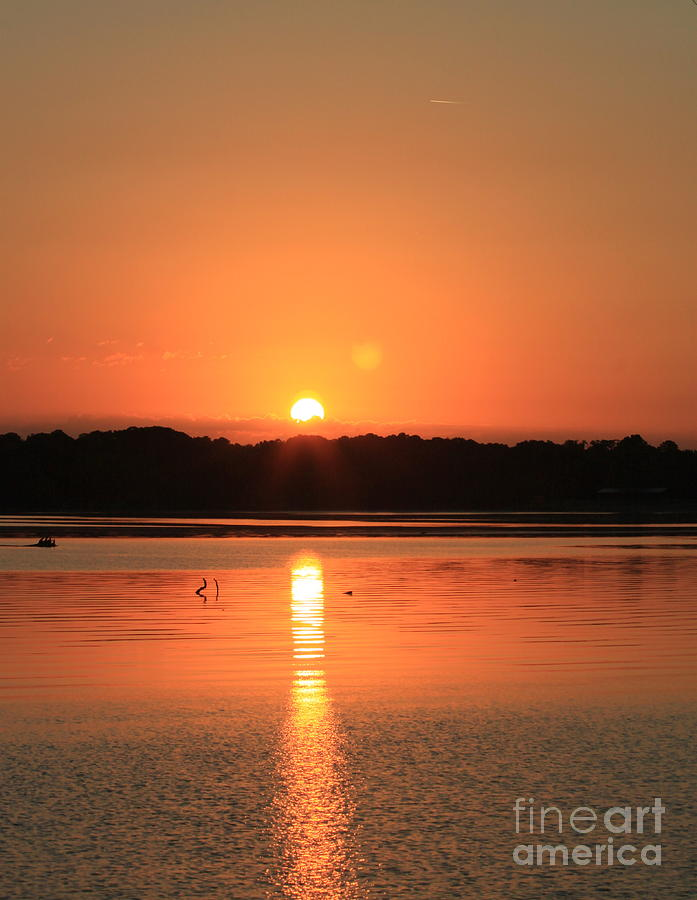 Sunrise Over The River Photograph
