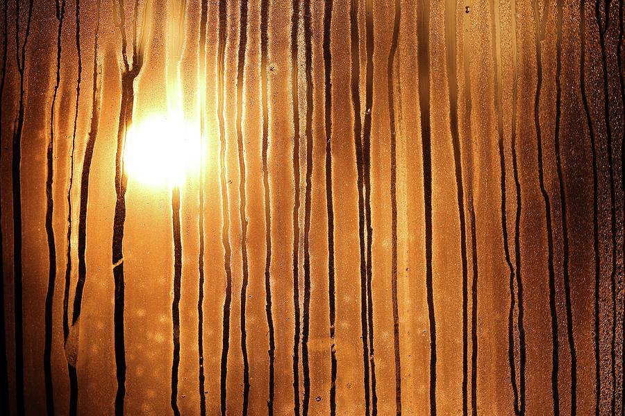 Sunrise Photograph - Sunrise by Robin Street-Morris
