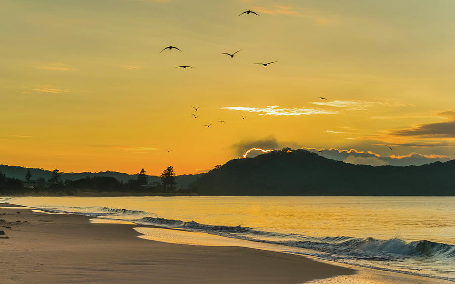 Umina Beach Photograph - Sunrise Seascape With Mountain And Birds by Merrillie Redden