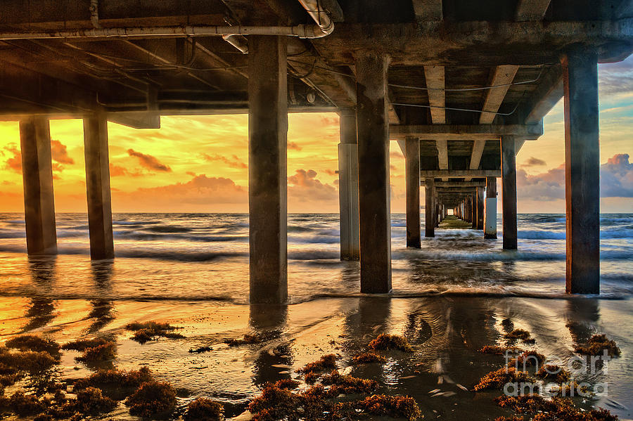 Sunrise Under the Pier by Roxie Crouch