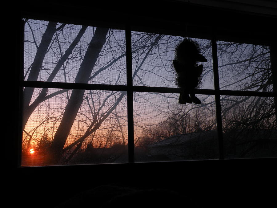 Sunrise Window Photograph by Caitlin Binkhorst