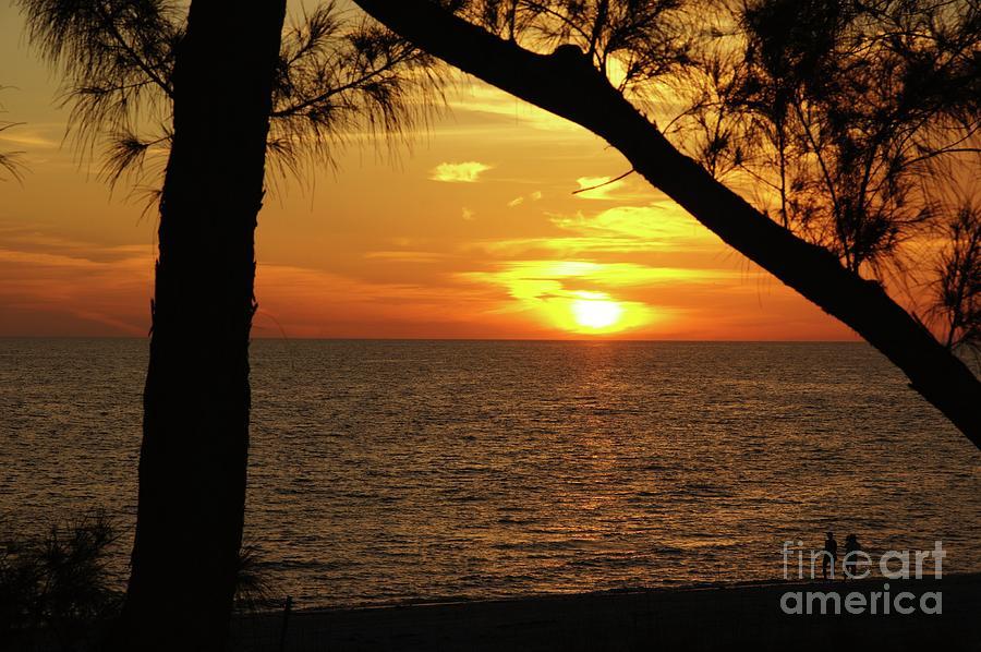 Sunset Photograph - Sunset 2 by Megan Cohen