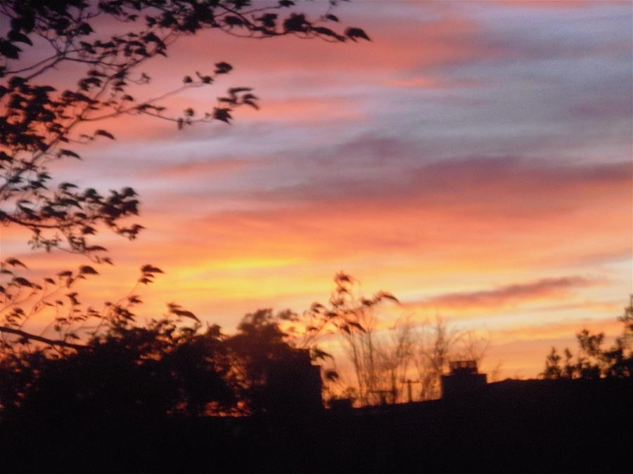 Sunset Photograph - Sunset 31 by Stephanie Moore
