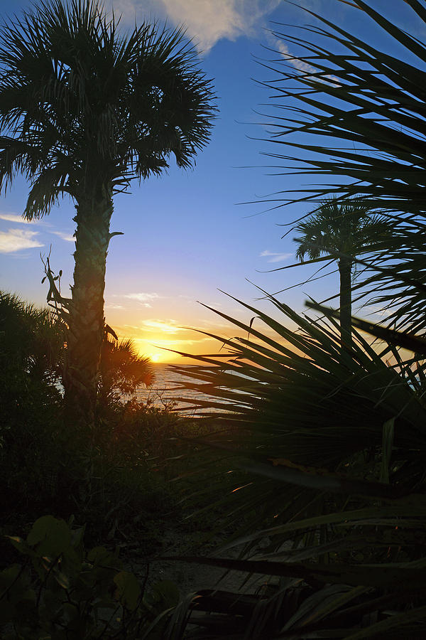 Sunset at Bearefoot Beach in Naples by Robb Stan