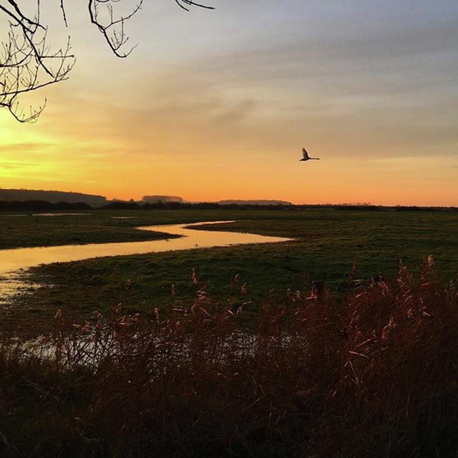 Nature Photograph - Sunset At Holkham Today  #landscape by John Edwards