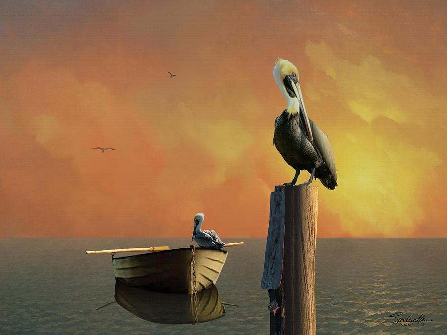 Pelican Digital Art - Sunset At Pelican Cove by M Spadecaller