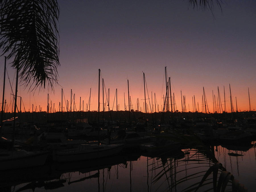 Sunset Photograph - Sunset At The Marina by Kelly E Schultz