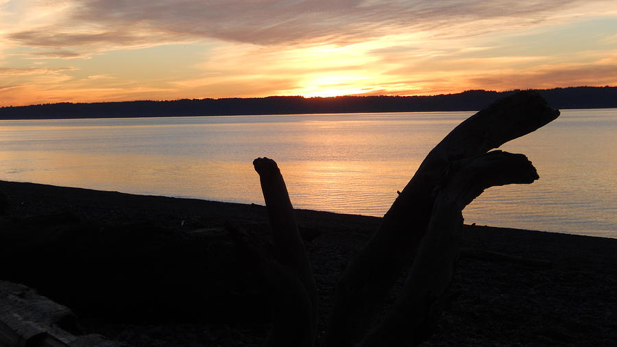 Lake Photograph - Sunset At The Shore by Eddie G