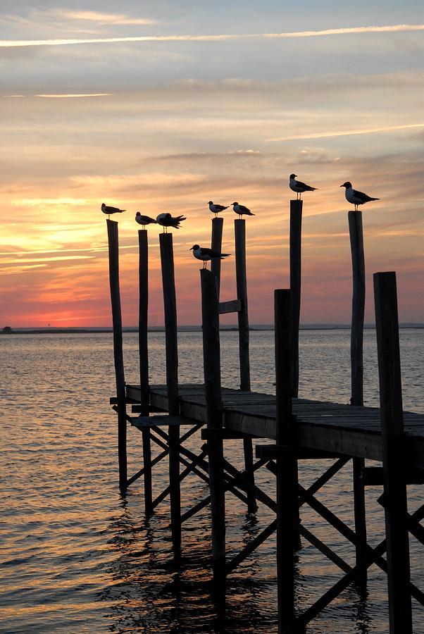 Canvas Prints Photograph - Sunset Bay 27 by Joyce StJames