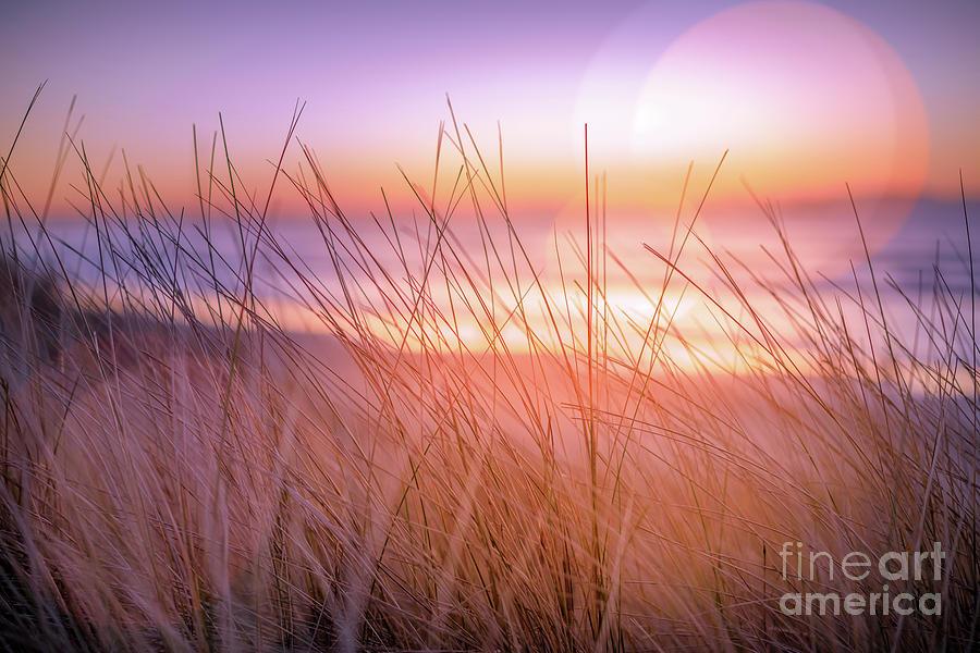 Bokeh Photograph - Sunset Bokeh by Inger Vaa Eriksen