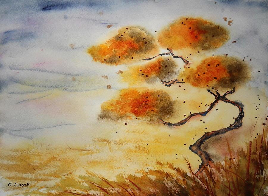 Sunset Bonsai by Carol Crisafi