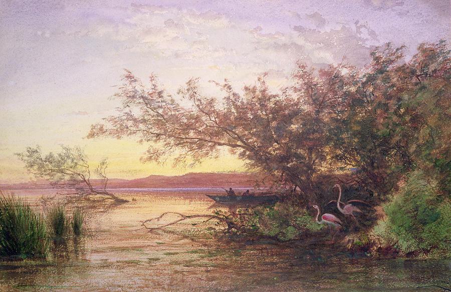 Flamingo Painting - Sunset, Camargue by Felix Ziem