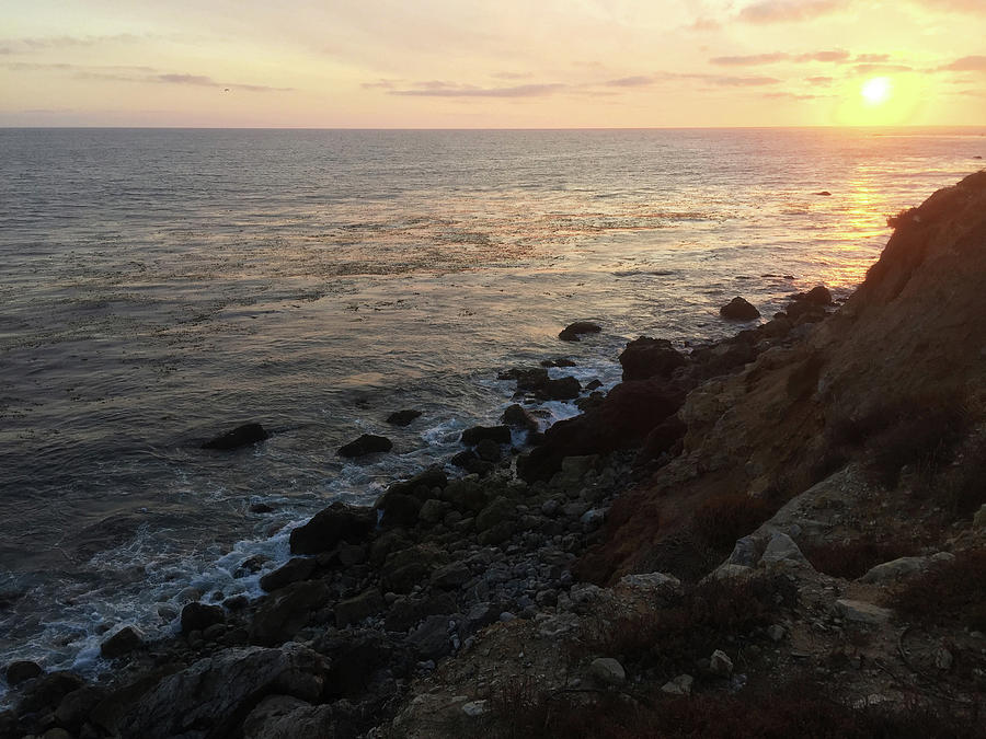 Sunset Photograph - Sunset Cliffs by Michele Aristy