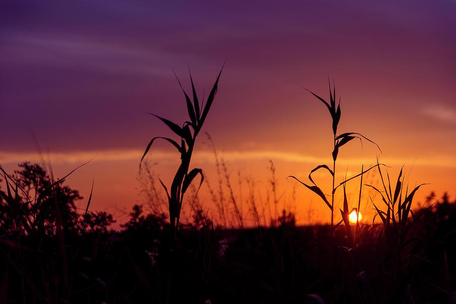 Sunset Photograph - Sunset Colours by Nikos Stavrakas