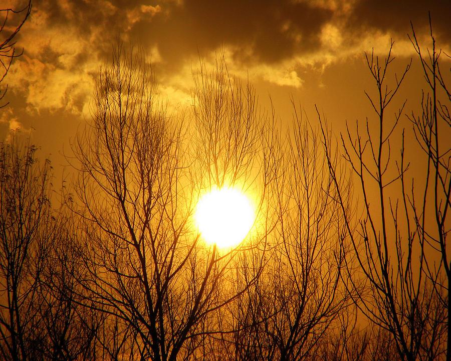 Sunset Photograph - Sunset by Dottie Dees