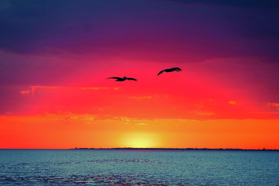 Sunset Dreams Photograph by Llilys Benavides