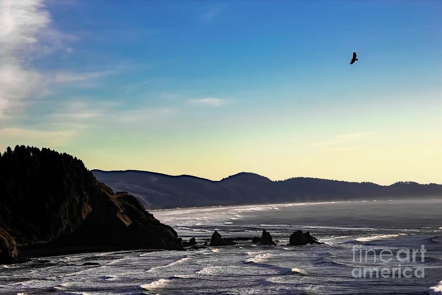 Oregon Coast Photograph - Sunset Eagle by Jon Burch Photography