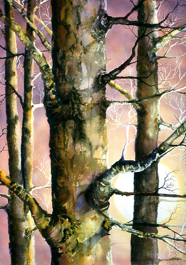 Trees Painting - Sunset Forest by Connie Williams