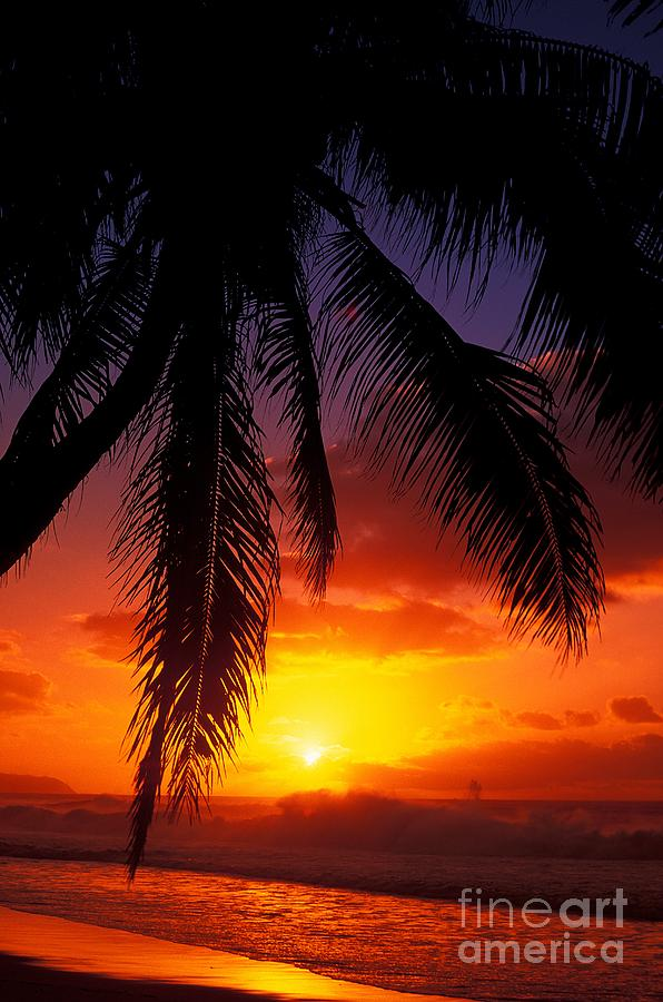 Beach Photograph - Sunset From The Beach by Vince Cavataio - Printscapes