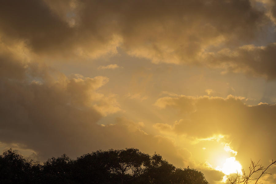 Sunset Photograph - Sunset Glow 2 by Tania Read