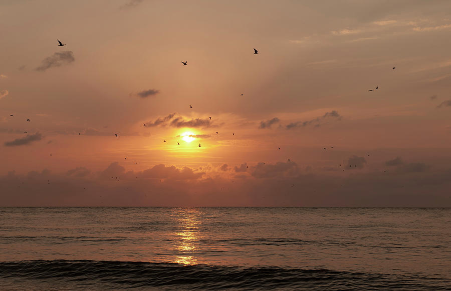 Sunset Florida by Gouzel -