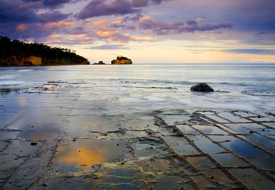 Tasman Photograph - Sunset Grid by Mike  Dawson